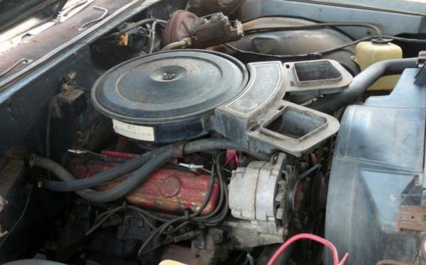 buried-1970-buick-skylark-gs-350-v8
