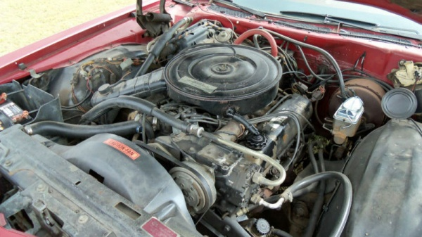 survivor-1974-ford-ltd-country-squire-wagon-engine