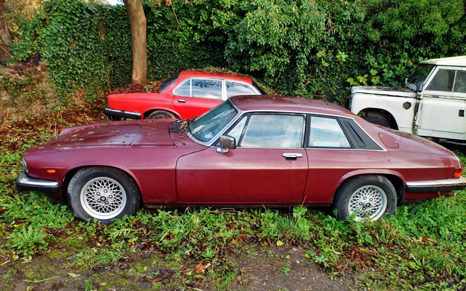 Liams Jaguar XJS