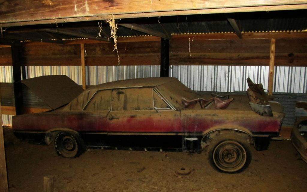 Dusty 1965 GTO