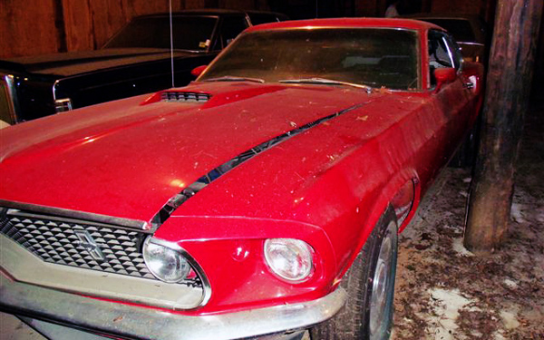 NC Find Mustang