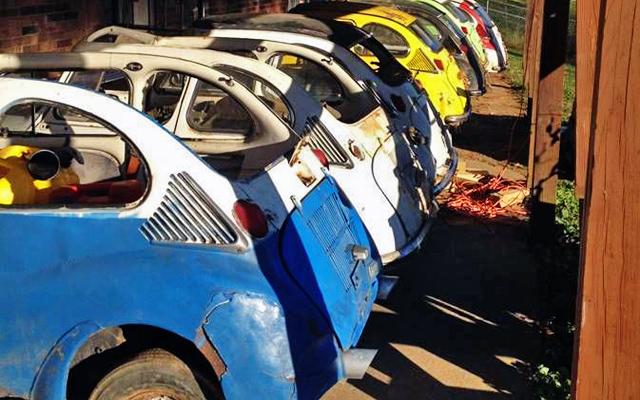 Subaru Ladybugs