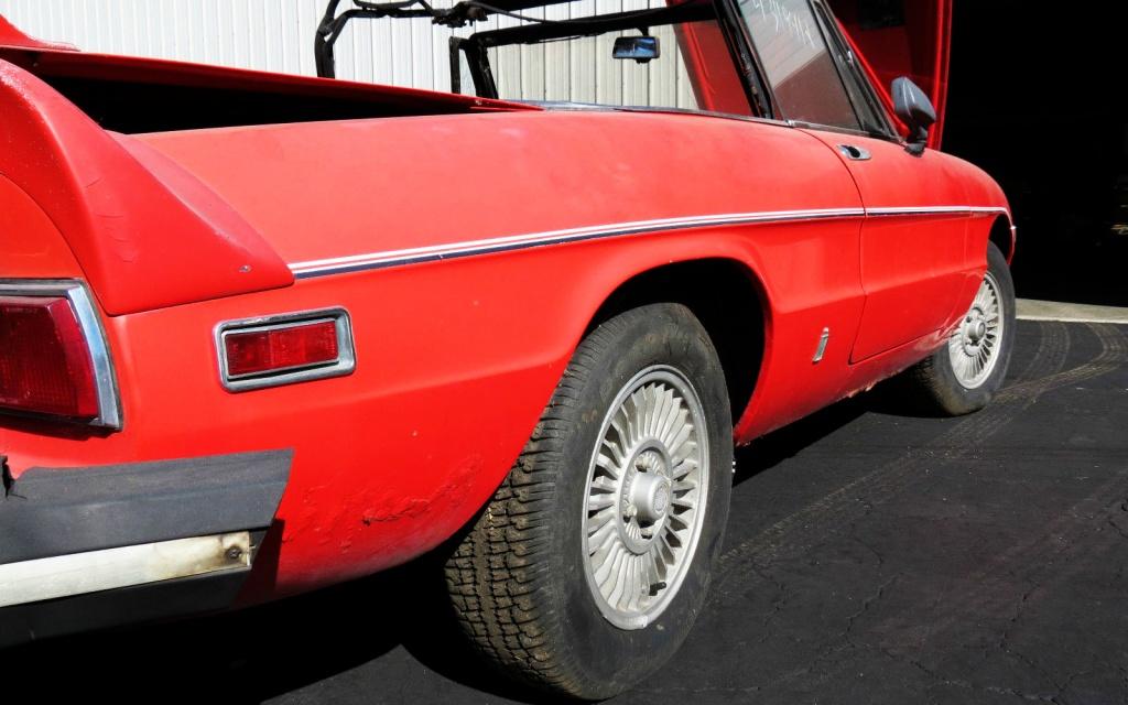 Alfa Spider Rear Fender