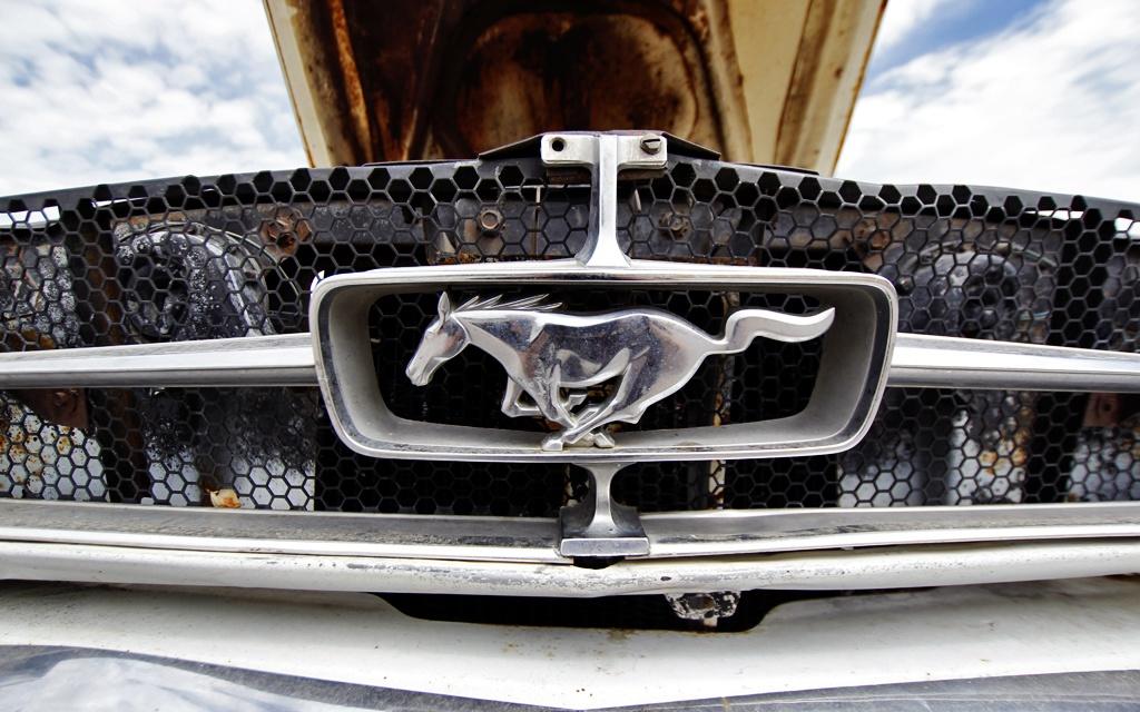 BF's Pony Car