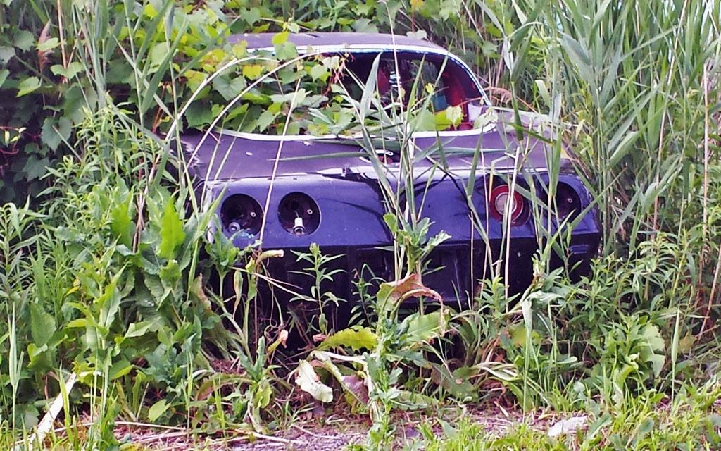 Upstate Corvette Graveyard