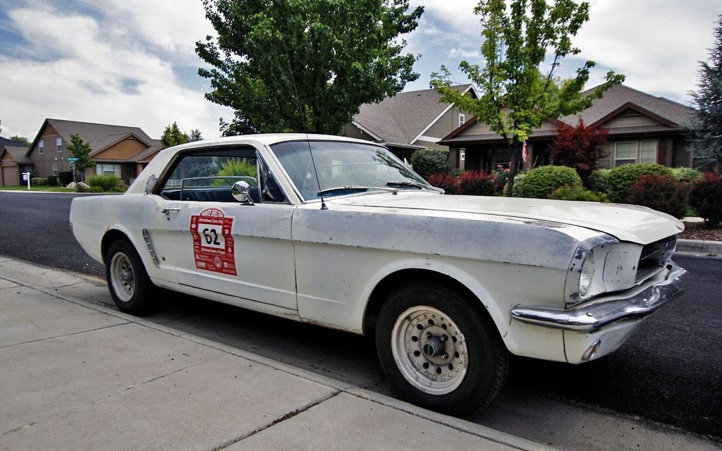 Mustang back in Boise