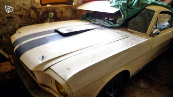 Alpine Shelby GT 350
