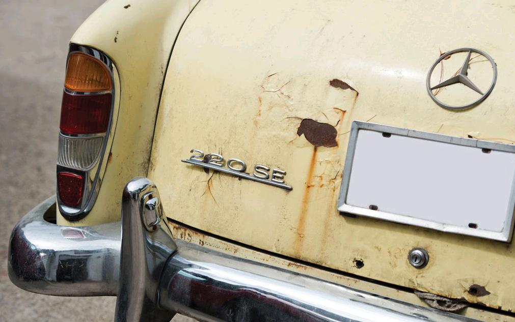 crusty-trunk