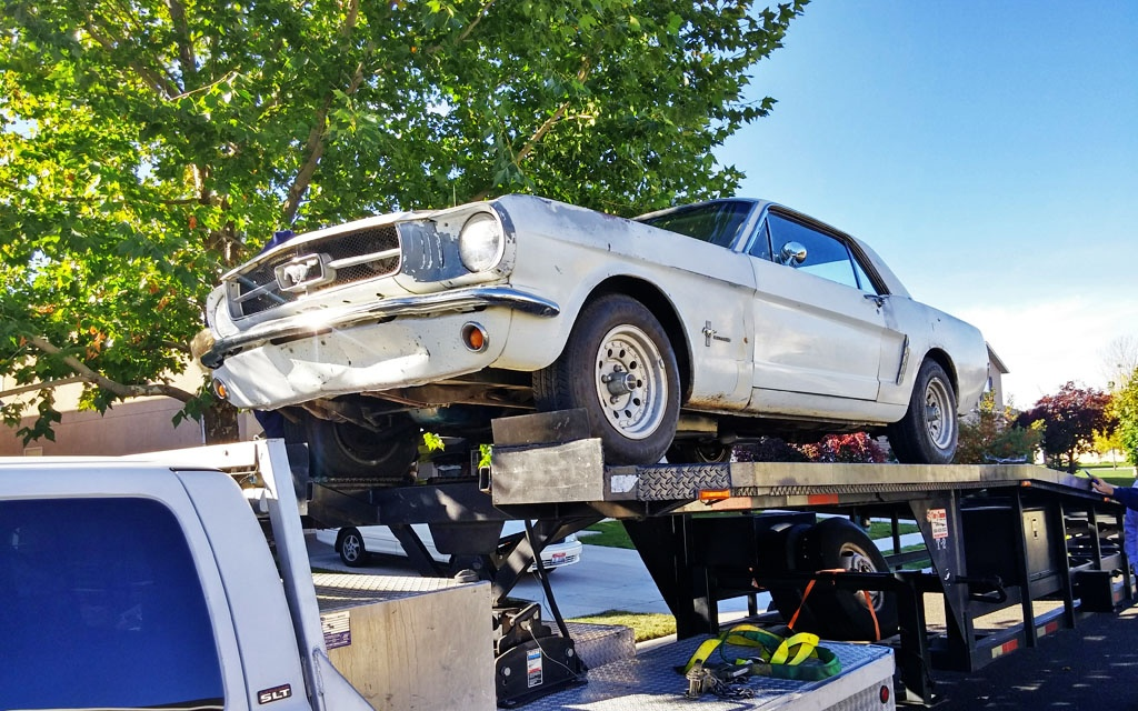 Mustang on the Trailer