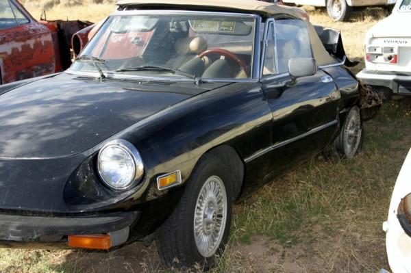 1978-alfa-spider-parts-car