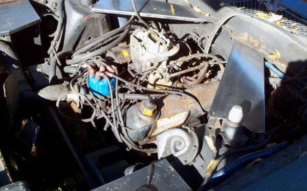 1972 Mustang Engine