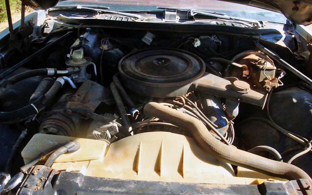 1976 Buick Century Engine