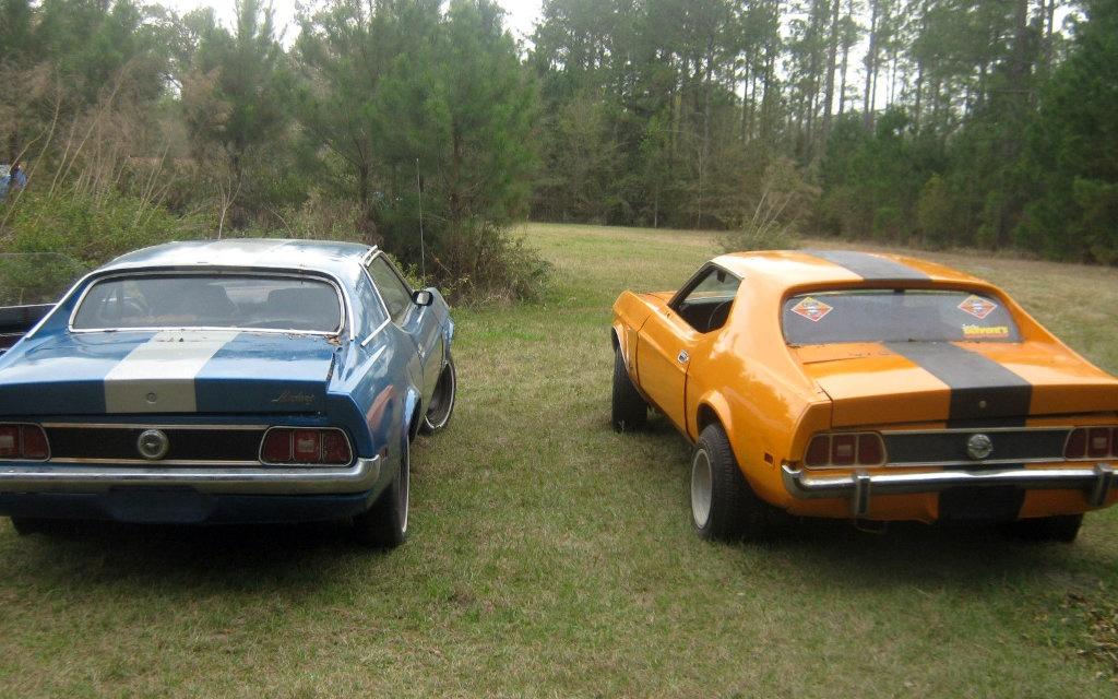 1971 Ford Mustangs