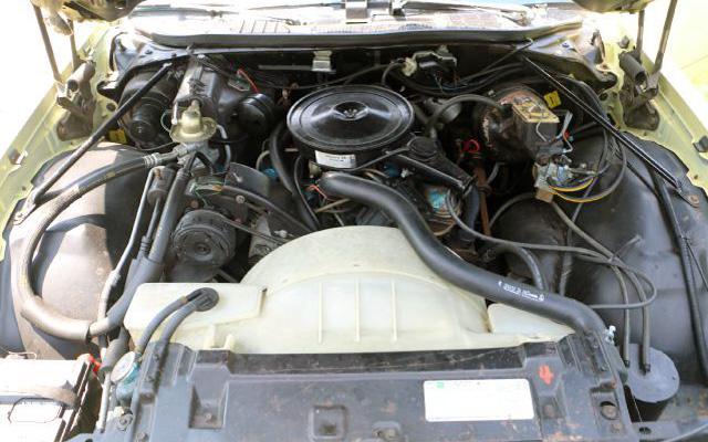 1976 Buick Regal Engine