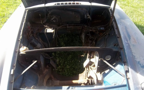 Project engine bay