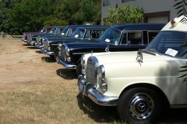 Mercedes Wagons