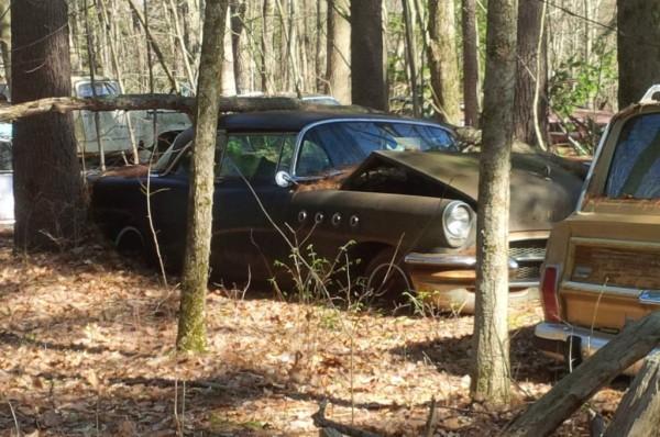 backwoods junkyard