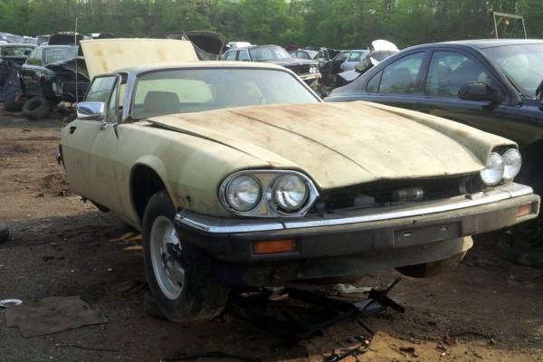 junkyard Jaguar