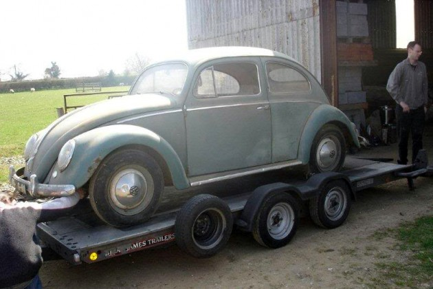 Beetle ready to go home