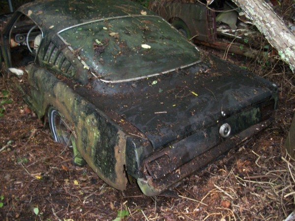 '65 Mustang forest find fastback baby