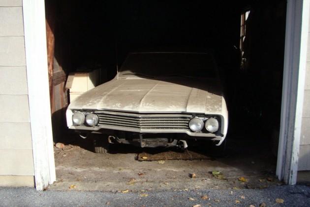 Peeking out of the garage