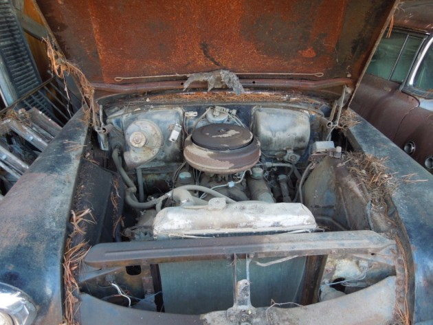 '56 Buick. engine