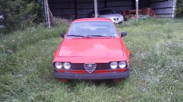 '75 Alfa front