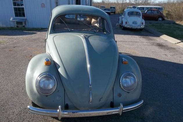 VW Split Window Beetle