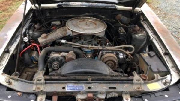 1979 Ford Mustang 302 V8