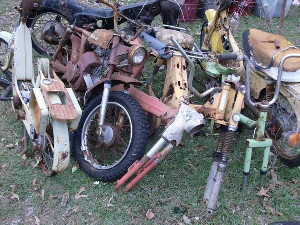 7 bikes 2