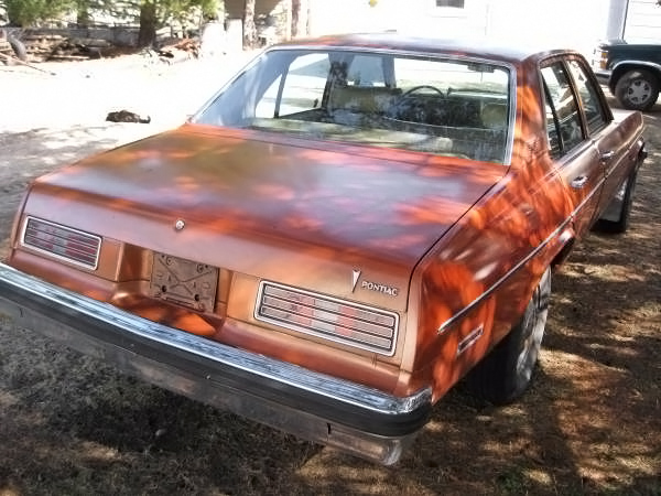 040516 Barn Finds - 1977 Pontiac Ventura - 3