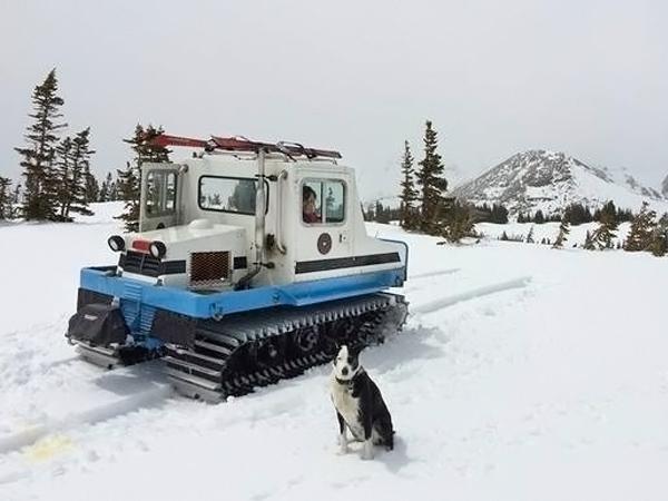 052416 Barn Finds - 1979 Bombardier Bombi Snowcat - 1