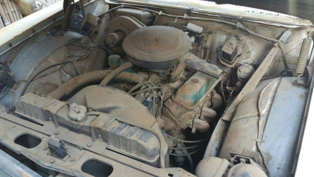 Dusty V6