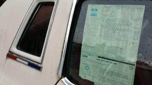 Window Sticker