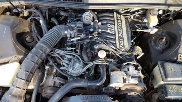38 V6