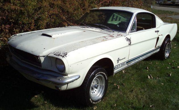 1965-mustang-gt-350-clone