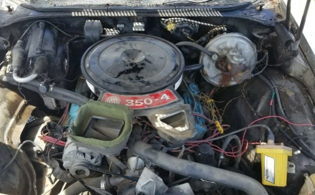 [WQZT_9871]  One Owner Barn Find: 1972 Buick GS | Wiring A Coil For A 1968 Buick 350 |  | Barn Finds