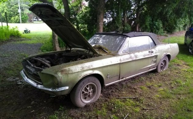 Shade Tree Find 1967 Ford Mustang Convertible