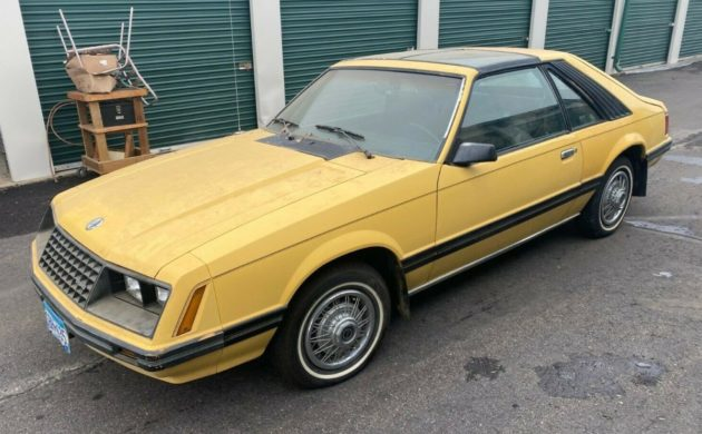 Storage Unit Find 1982 Ford Mustang Glx