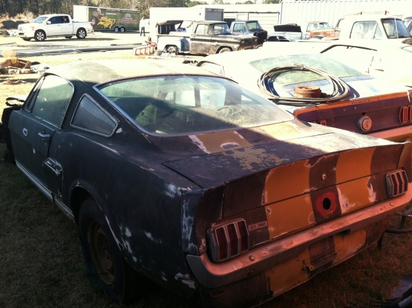 storage-container-shelby-rear